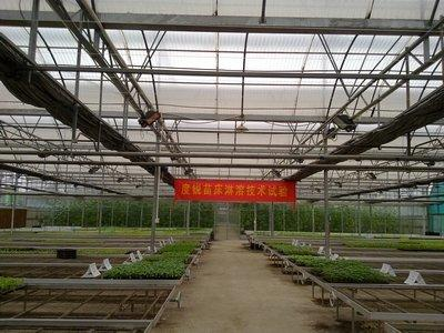 Polycarbonate corrugated sheet project in Guangdong , 1.0mm  18000M2